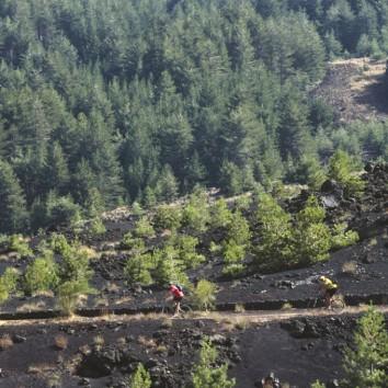 Ciclisti attraversano la Pista Altomontana - © pietronicosia.it