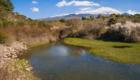 Il versante nord dell'Etna e le acque del Lago Gurrida - © pietronicosia.it