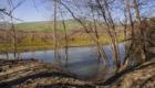 I vigneti a ridosso del lago - © pietronicosia.it