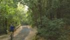 Un tratto del sentiero verso Casa Zampini - © pietronicosia.it