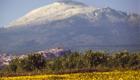 L'Etna visto dalla Piana di Catania; si nota l'abitato di Motta Sant'Anastasia - © pietronicosia.it