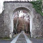 Riforme aree protette: venerdì convegno al Parco dell'Etna