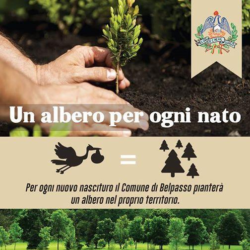 albero per ogni nato a belpasso