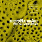 """Trecastagni, """"Micronaturart"""" la scienza che entusiasma gli studenti"""