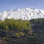 Etna, maggio in bianco