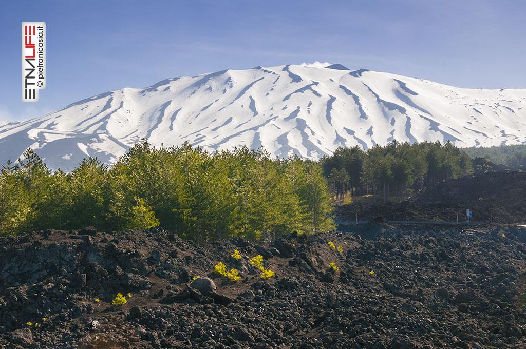 Etna, Serra delle Concazze innevata - © pietronicosia.it