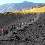 Parco Trekking 2015