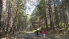 Il sentiero che conduce allo Zappinazzu - © pietronicosia.it