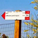 """Etna, inaugurato il """"Sentiero delle ginestre"""""""