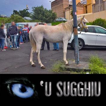 u_sugghiu_a_34