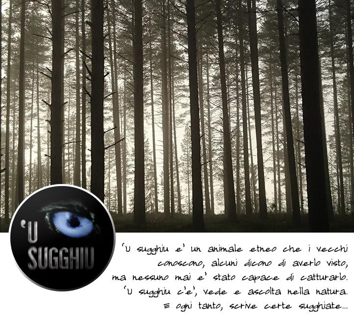 u_sugghiu_testata_35